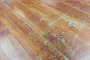 damaged wooden floors plank need restored