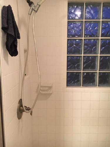 custom shower before